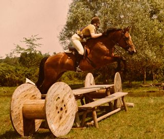 Is this mistake hurting your relationship with your horse?