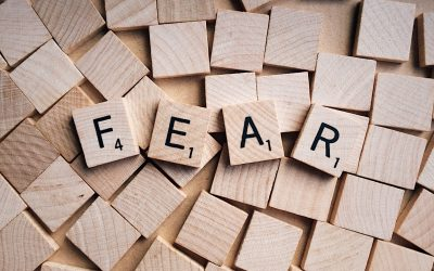 Courageous vs. Fearless – Why 1 of These is Actually Stupid