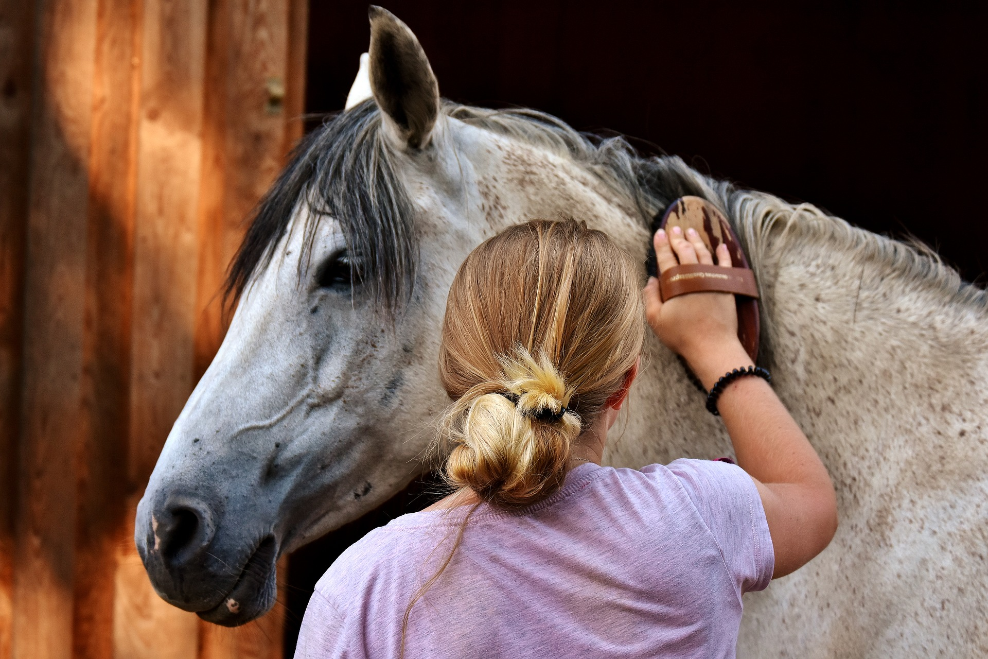 Your horse is better cared for than you are. And that needs to change.