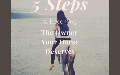 Five Steps to Becoming the Owner Your Horse Deserves – Part 1