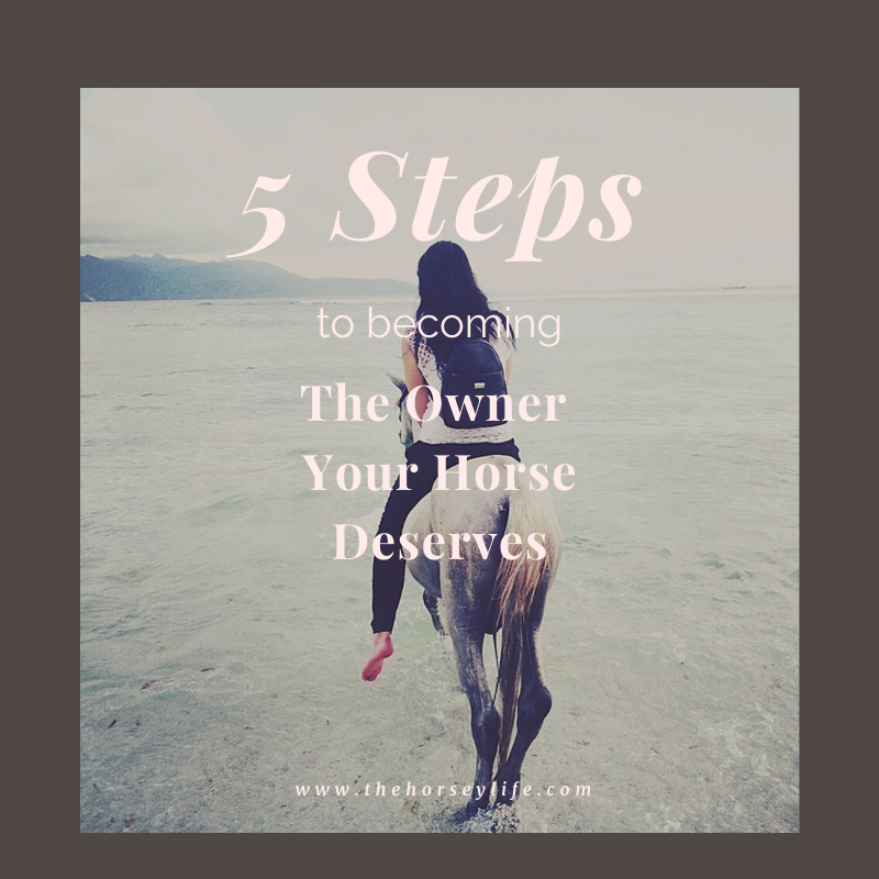 Five Steps to Becoming the Owner Your Horse Deserves – Step 1