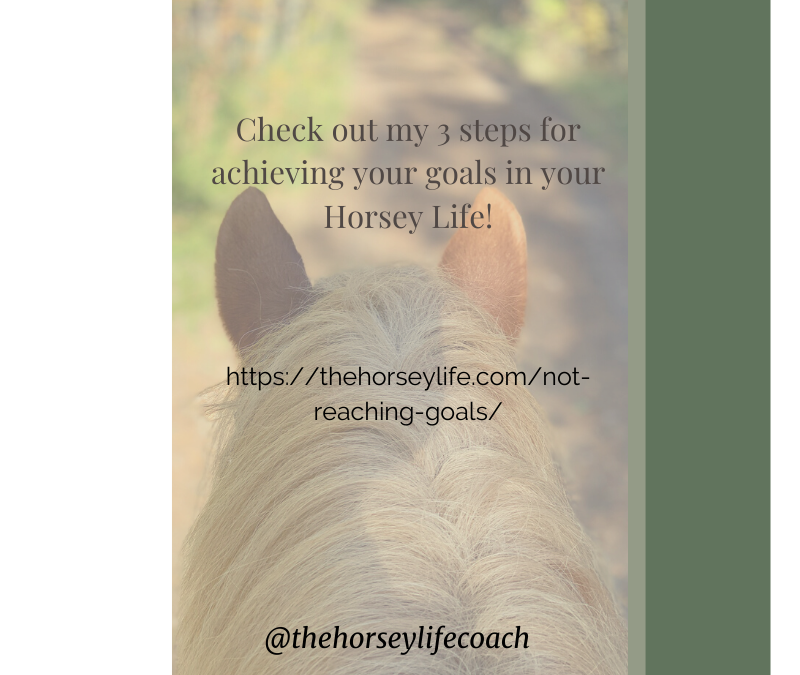 Frustrated Because You're Not Reaching Your Horsey Life Goals? Help is at Hand!