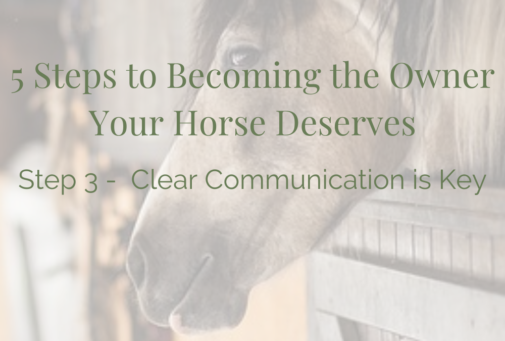 Becoming the Owner Your Horse Deserves – Part 3 Clear Communication