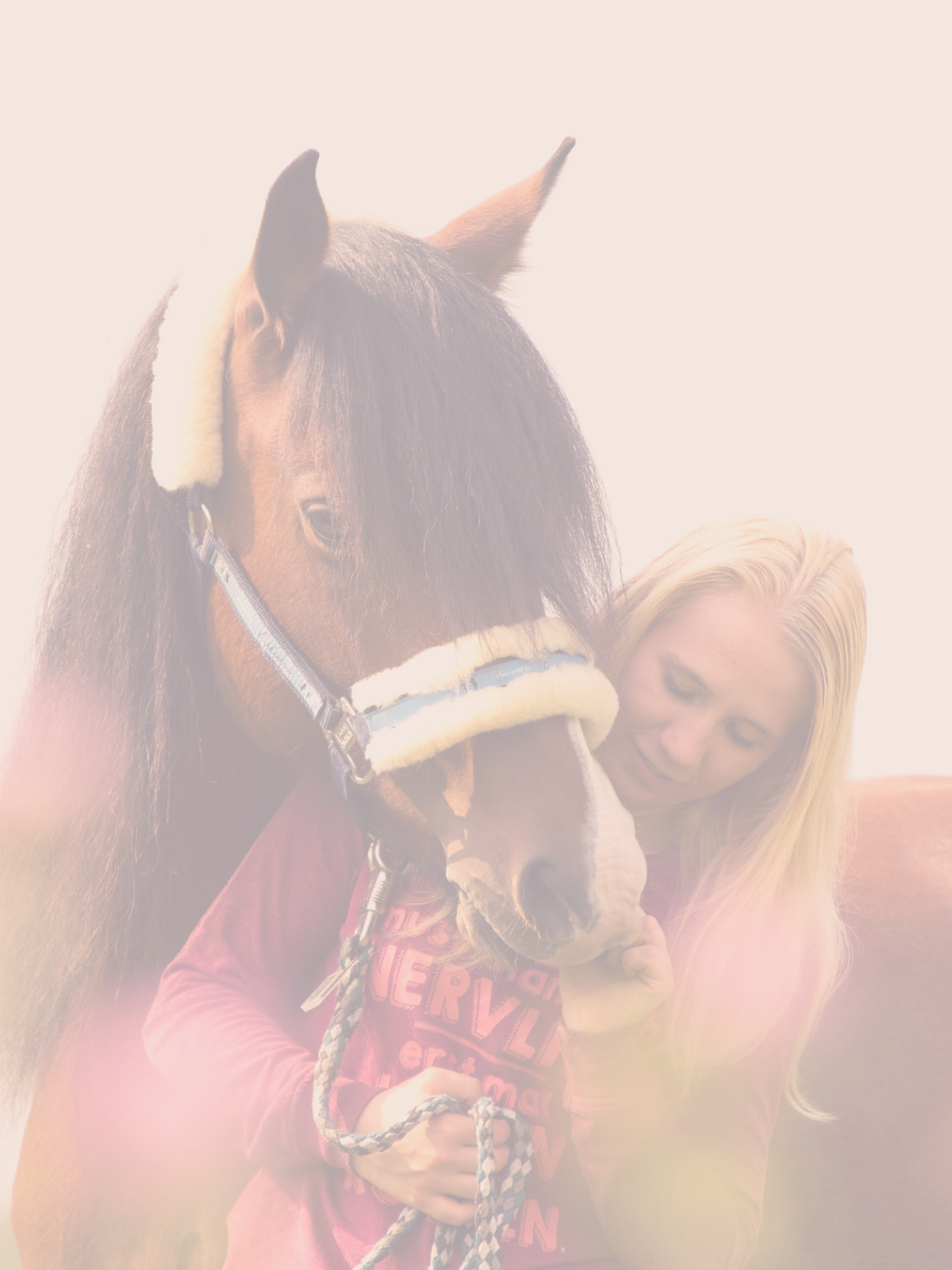 Five Steps to Becoming the Owner Your Horse Deserves – Step 2 Understand Yourself