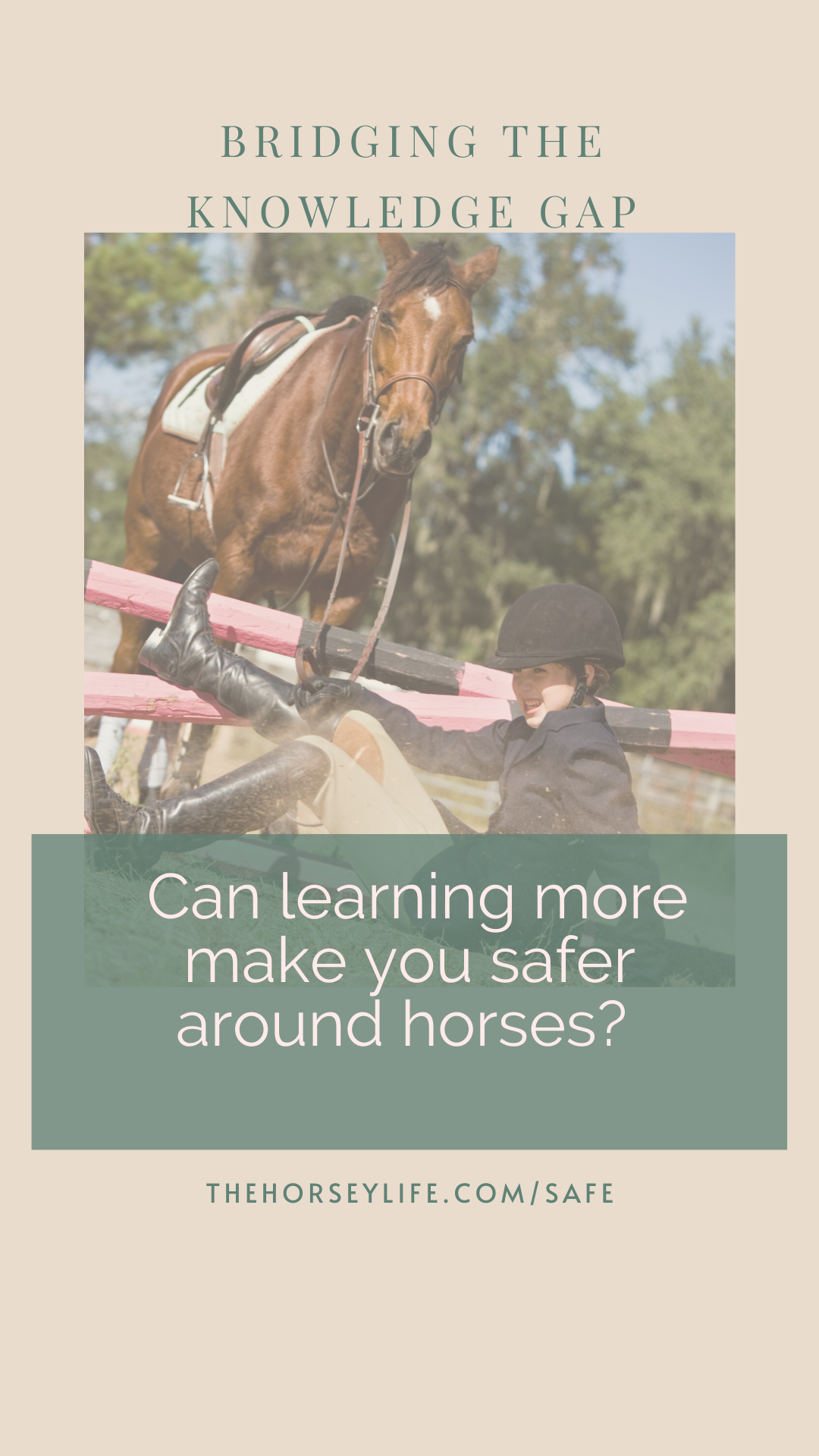 Bridging the knowledge gap. Can learning more make you safer around horses?